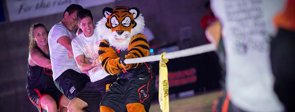Lip Sync, Band Frolic, Tiger Rally: What's the Difference?